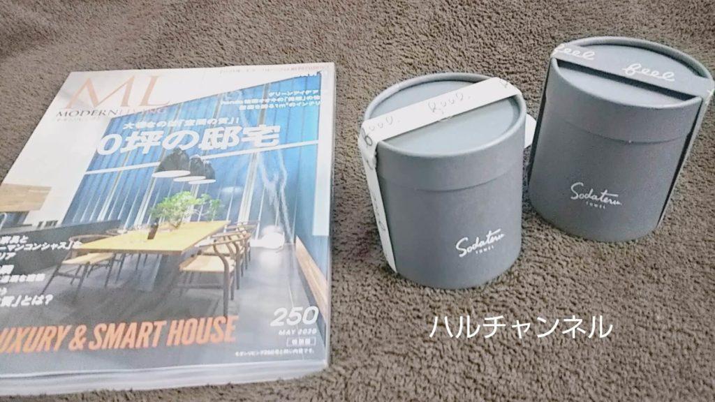モダンリビングNo.250×「育てるタオル」feelプチフェイスタオル特別セット